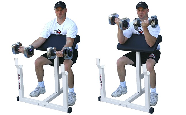 Preacher Curls Exercise
