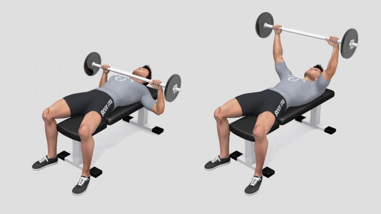 Flat bench press with a Barbell
