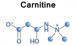 top 10 supplement reviews Carnitine