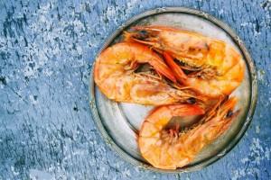 L-Taurine shrimp