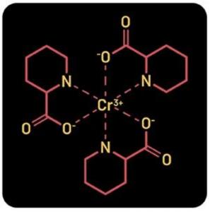 Fighters Core ingredient - Chromium Picolinate